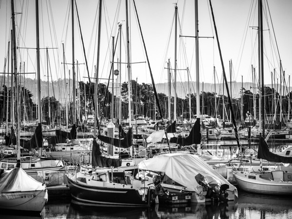 Marina SailsMarina Boats in Berkeley, CA